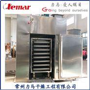 熱風循環烘箱兩門兩車CT-C-Ⅰ