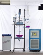 YSF-10L 20L 30L 50L标准型双层玻璃反应釜