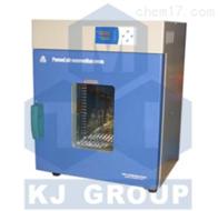 DZF-6020-250℃真空干燥箱