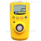 GAXT-X-DL加拿大BW手持式氧气检测仪