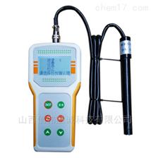 BDO-300S智能溶解氧分析仪