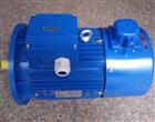 YVF-100L2-4紫光YVF型變頻電機,台州紫光調速電機