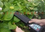 活體葉面積測量儀報價