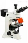 TL3201-LED四川正置落射荧光显微镜