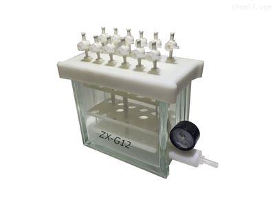 ZX-G12固相萃取装置