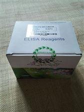 48T/96T仓鼠,可溶性腺苷酸环化酶,sAC,ELISA, 试剂盒