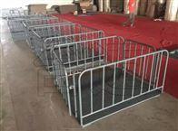 贵州养殖场1.2x1.5带围栏称猪秤/1吨畜牧秤