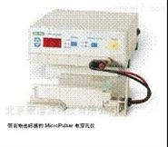 Bio-Rad电穿孔仪