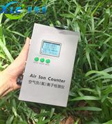 新型手持式空气负氧离子检测仪XCSE-60厂家
