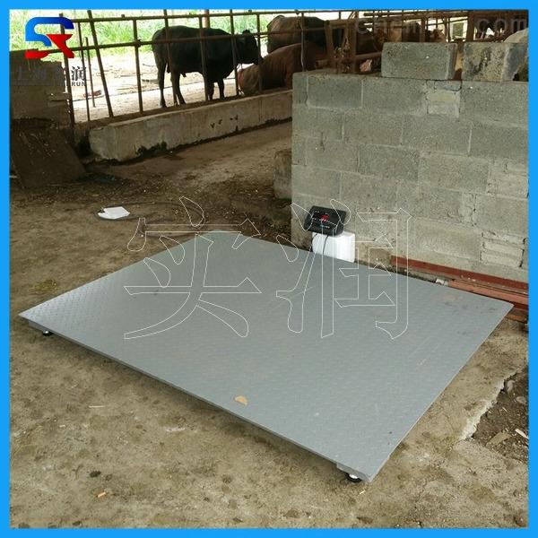 滁州1.2米1.5米电子地磅/Zui大称重3吨