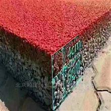 山东济南城市透水混凝土胶结料 增强剂厂家