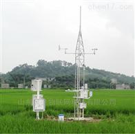 FT-NY9农田环境信息监测系统