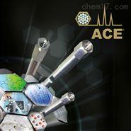 用于肽类和蛋白质的ACE色谱柱