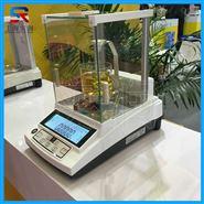 上海产200克测物体密度的电子天平