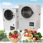 CZ-HFD小型食品冷冻干燥机