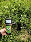 风速记录仪SBQZ-FS