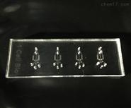 1cell-bio微流控芯片,MICROFLUIDIC CHIP