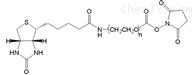 修饰蛋白质Biotin-PEG-NHS生物素聚乙二醇活性酯