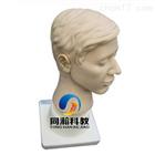 TAH-LV16高级耳部检查模型|护理