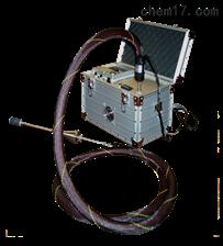 Model 2001美国CAI便携式非甲烷总烃