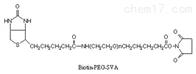 修饰蛋白质Biotin-PEG-SVA生物素PEG琥珀酰亚胺戊酸酯