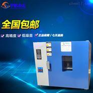 电热工业烤箱干燥箱 高温烤箱老化实验箱