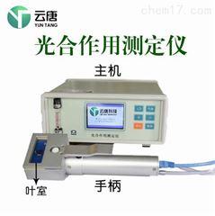 YT-FS831光合仪价格