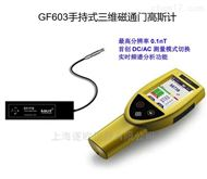 GF603手持式三維磁通門高斯計