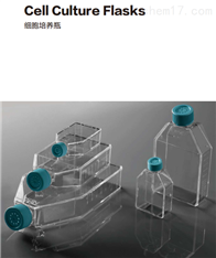 NEST耐思T25细胞培养瓶707003