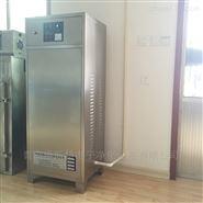 大型臭氧发生器,高浓度臭氧发生器,空气消毒臭氧发生器