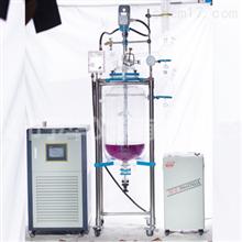 YSFT(EX)-托盘型变频调速双层玻璃反应釜