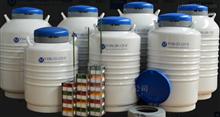 YDS-175-216-FS实验室液氮罐