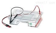 美国伯乐Sub-Cell Model 96Cell水平电泳仪