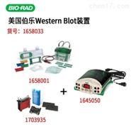 垂直电泳转印系统套装14100元现货促销