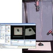 CinePlex視頻記錄和行為學軌跡分析系統