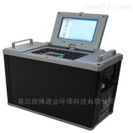 便携式紫外吸收烟气分析监测系统