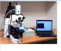 叶绿素荧光成像仪SYE-YH02