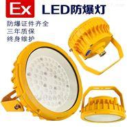 仓库LED防爆应急灯 30w50w防爆灯 应急照明