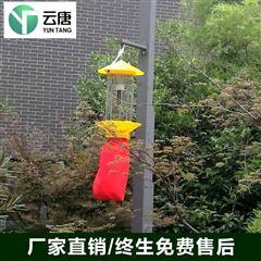 YT-SC15太阳能杀虫灯价格厂家