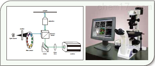MetaFluor 离子成像系统