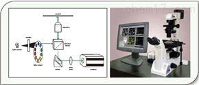 MetaFluor 離子成像系統
