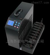 SH-CF蓄电池充放电测试设备