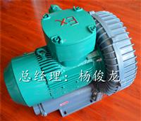 FB-7.5旋涡高压防爆鼓风机