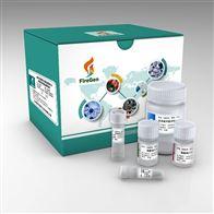磁珠法石蜡DNA提取试剂盒 FFPE DNA Kit