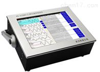 RS-ST06D(T)RS-ST06D(T)跨孔超声波检测仪