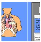 虛擬心肺聽診