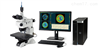 尼康高分辨率白光干涉仪BW-500系列