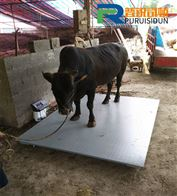 1.5x3m牲畜称/称活羊小地磅价格