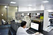 免疫组化实验代测服务