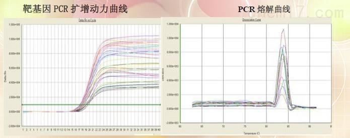 实时荧光定量PCR实验待测服务